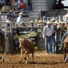 Robert Lloyd III, right, gets his rope over this steer\'s horns while team roping partner Tanner Lloyd, aims for the steer\'s feet during the morning go-round at the IFYR rodeo on Thursday, July 11, 2013. July 10, 2013. They are from Mount Ulla, NC. Photo by Jim Beckel, The Oklahoman.