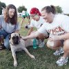Mastiff foster owner Julie Moseley, left, introduces Athena to Mallori Willis, center, and Patti Burris before the start of the class. PHOTOS BY PAUL HELLSTERN, THE OKLAHOMAN