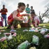 Lola Barnum, 3, picks up candy eggs Friday at the city of Norman's annual Easter egg hunt at Andrews Park. PHOTOs BY STEVE SISNEY, THE OKLAHOMAN