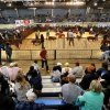 Entrants walk their hogs around the ring Tuesday as judges stand in the middle to view them at the Oklahoma Youth Expo at State Fair Park. Photos by Jim Beckel, The Oklahoman Jim Beckel -