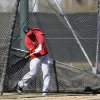 Los Angeles Angels\' Albert Pujols hits balls in a batting cage during a baseball spring training workout Monday, Feb. 20, 2012, in Tempe, Ariz. (AP Photo/Morry Gash)