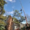 Luis Salinas of Green Mansion Tree Co. is lifted by crane in the air from the roof of a home after working to remove a section of a tree that had fallen on a home early this morning from high winds on Thursday, Jan., 31, 2013 in Sea Cliff, N.Y. More than 100,000 homes and businesses are without power in Connecticut, Rhode Island and upstate New York. (AP Photo/Kathy Kmonicek)