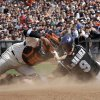 Photo - Colorado Rockies' DJ LeMahieu (9) scores past San Francisco Giants catcher Hector Sanchez during the eighth inning of a baseball game in San Francisco, Sunday, June 15, 2014. (AP Photo/Jeff Chiu)