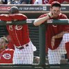 Photo - Cincinnati Reds' Derrick Robinson (15) and Tony Cingrani watch from the dugout in the ninth inning of a baseball game against the New York Mets, Wednesday, Sept. 25, 2013, in Cincinnati. New York won 1-0. (AP Photo/Al Behrman)