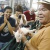 OKLAHOMA STATE FAIR KIDS DAY: Retired Yukon High School Agriculture teacher Mac DeVilbiss shows young people a newborn piglet in the birthing center at the State Fair in Oklahoma City, OK, Monday, Sept. 21, 2009. By Paul Hellstern, The Oklahoman ORG XMIT: KOD