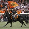 Bullet runs onto the field during the Bedlam college football game between the University of Oklahoma Sooners (OU) and the Oklahoma State University Cowboys (OSU) at Boone Pickens Stadium in Stillwater, Okla., Saturday, Nov. 27, 2010. Photo by Chris Landsberger, The Oklahoman