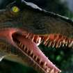 A Deinonychus is one of the dinosaurs on display at a new exhibit at the Oklahoma City Zoo in Oklahoma City on Wednesday, March 11, 2008. By John Clanton, The Oklahoman