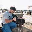 Oklahoma State  University veterinary professor Michael Davis talks to sled  dog River last year  in Alaska.  Photo provided by OSU