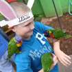 CHILD / CHILDREN / KIDS / EASTER: Marcello Jacobs, 10, of Yukon, plays with birds at the Oklahoma City Zoo, Sunday, April 8, 2012.  Photo by Garett Fisbeck, For The Oklahoman
