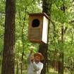 Martin Park naturalist Neil Garrison carefully lowers an owl box to the ground.  Owl boxes in the park are suspended between trees in order to keep squirrels from invading the owls' nests.  Community Photo By:  Jennifer Lindsey-McClintock  Submitted By:  Jennifer, Oklahoma City