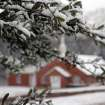 Snow lightly blankets a small tree near the New Era Baptist Church in Meridian, Miss., Thursday, Jan. 17, 2013. The early morning snow didn't last long as it was all gone before noon. (AP Photo/The Meridian Star, Paula Merritt)