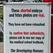 Sign at the Genocide Awareness Project.  Community Photo By:  Kayla R. Hembree  Submitted By:  Brenda,