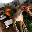 A Deinonychus (right) is one of the dinosaurs on display at a new exhibit at the Oklahoma City Zoo in Oklahoma City on Wednesday, March 11, 2008. By John Clanton, The Oklahoman ORG XMIT: KOD