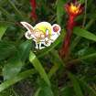 The Elf is on a trip in the rainforest! submitted by OPUBCO staff