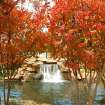 Fall Colors on the Bricktown Canal  Community Photo By:  Michael Gross  Submitted By:  Michael, Oklahoma City