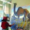 Debby Kaspari paints megatylopus, a prehistoric camel, for the Collecting Oklahoma centennial exhibit at the Sam Noble Oklahoma Museum of Natural History.  Community Photo By:  Linda Coldwell  Submitted By:  Linda, Norman