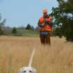 A bird dog on the hunt for quail. Several bird dog seminars are scheduled at the Oklahoma Wildlife Expo. Photo by Wade Free