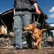 Walt Harmon, 24, walks with his dog, Pal, a mutt, past what's left of his family's home Tuesday afternoon, July 19, 2011. The dog awakened Walt's mother,  Susan Harmon with constant barking Sunday night when their home caught fire. Walt credits the pet with saving his life and allowing him to rescue his mother, and her parents, Harold and Donna Gilliam.  from the smoke-filled home before it was destroyed by flames.   The home is in rural Lincoln County about six miles north of Jacktown.     Photo by Jim Beckel, The Oklahoman