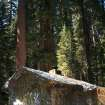 In this photo provided by the National Park Service, a Merced Grove cabin, next to the giant sequoias, is covered in metal foil by CalFire crews trying to protect structures from the Rim Fire burning through trees near Yosemite National Park, Calif., on Tuesday, Aug. 27, 2013. Firefighters gained some ground Tuesday against the huge wildfire burning forest lands in the western Sierra Nevada, including parts of Yosemite National Park. (AP Photo/National Park Service)