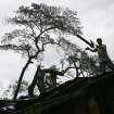 A worker removes sections of a fallen tree from a damaged house caused by Typhoon Koppu in suburban Quezon city, north of Manila, Philippines on Monday, Oct. 19, 2015. Army, police and civilian volunteers scrambled Monday to rescue hundreds of villagers trapped in flooded homes and on rooftops in a northern Philippine province battered by slow-moving Typhoon Koppu. (AP Photo/Aaron Favila)