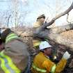 Lone Grove firefighter Greg Allen (top) and volunteer Jack Brown search through broken trees north of highway 70 in Lone Grove following deadly storms around Lone Grove, Okla., Feb. 11, 2009. By John Clanton, The Oklahoman