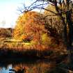 Reflection of Fall  Community Photo By:  Ron Skeeters  Submitted By:  Ron,
