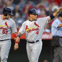 Photo - St. Louis Cardinals' Yadier Molina, center, gestures toward Daniel Descalso as Matt Adams watches, after they scored on Descalso's double during the second inning of a baseball game against the Los Angeles Angels, Wednesday, July 3, 2013, in Anaheim, Calif. (AP Photo/Mark J. Terrill)