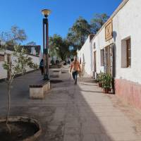 Photo -   This August 2012 photo shows a man walking with his llamas down a street in San Pedro de Atacama, Chile. The town of about 3,000 residents is the gateway to activities in the Atacama Desert. (AP Photo/Karen Schwartz)