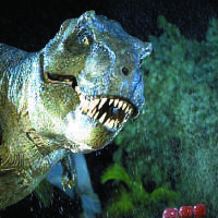 Photo - A Tyrannosaurus rex descends on a victim in a scene from