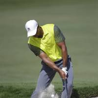 Photo - Tiger Woods hits from an 18th hole bunker during the first round of the Cadillac Championship golf tournament Friday, March 7, 2014, in Doral, Fla. A severe thunderstorm delayed first round play during on Thursday. (AP Photo/Wilfredo Lee)