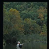 Photo - Go fly fishing FOR TROUT in the Mountain Fork River near Beavers Bend State Park in southeast Oklahoma. PHOTO PROVIDED.  Jim Argo