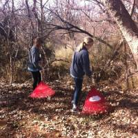 Photo - Two members of North Church rake leaves as part of a Feb. 15 beautification project at Shiloh Camp in northwest Oklahoma City. Photo provided