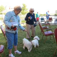 Photo - Elaine Johnson and her Bichon Frise named Putter Putter visit with Connie English and her Bichon Frise named BG after the Blessing of the Animals service on Thursday at Epworth Villa retirement community, 14901 N Pennsylvania.  Carla Hinton - The Oklahoman
