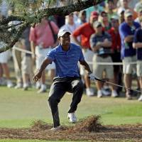 Photo - FILE - In this April 9, 2011, file photo, Tiger Woods nearly falls backward after hitting out of the rough under the Eisenhower Tree on the 17th hole during the third round of the Masters golf tournament in Augusta, Ga. The Eisenhower Tree was removed this weekend because of damage from an ice storm, the Augusta National Golf Club chairman Billy Payne said Sunday, Feb. 16, 2014. (AP Photo/Chris O'Meara, File)