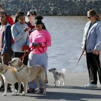 Photo - Walkers get ready to head out for a one-mile walk during DogFest Walk 'n' Roll Oklahoma City to benefit Canine Companions on Saturday. PHOTO BY STEVE SISNEY, THE OKLAHOMAN  STEVE SISNEY - THE OKLAHOMAN