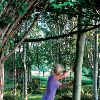 """Photo - This undated publicity photo released by courtesy Timber Press, shows Bunny Guinness using a tree to stretch for exercise from the book, """"Garden Your Way To Health and Fitness,"""" by Bunny Guinness and Jacqueline Knox (Design, Bunny Guinness). Gardening can be a formidable workout and calorie burner, especially when adding calisthenics to the mix, along with stretching to avoid cramping and joint pain. (AP Photo/ Courtesy Timber Press)"""