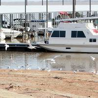 Photo - The shore almost meets the boat docks at the Little River Marina at Lake Thunderbird.