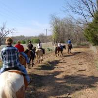 Photo - HORSEBACK RIDING / HORSES: Riders follow the trail at Sequoyah State Park near Wagoner. Trail rides are offered by Sequoyah Riding Stables.STATE TOURISM PHOTO ORG XMIT: 0903131658553964