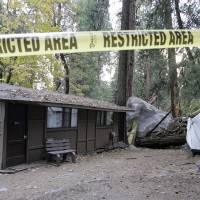 Photo -   FILE - In this Monday, Oct. 20, 2008 file photo, restriction tape blocks an area at Curry Village in Yosemite National Park, Calif., after a boulder fell during a rock slide. Falling boulders are the single biggest force shaping Yosemite Valley, one of the most popular tourist destinations in the nation's system of national parks. Now large swaths of popular haunts deemed unsafe are closing as officials acknowledge they knew for more than a decade ago that unsuspecting tourists were being lodged in harm's way. On Thursday, June 14, 2012, the National Park Service will announce that potential danger from the unstable 3,000-foot-tall slab of granite known as Glacier Point, a picturesque promontory that for decades has provided a dramatic backdrop to park entertainment events, will leave uninhabitable large parts of Yosemite Valley's most popular lodging areas. (AP Photo/Paul Sakuma)