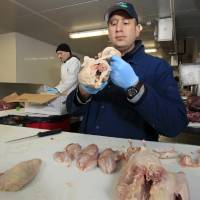 Photo -   In this April 26, 2012 photo, Pat LaFrieda Jr., whose business is featured on the new Food Network show