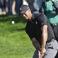 Photo - Tiger chips to the second green on the South Course at Torrey Pines where he bogeyed during the third round of the Farmers Insurance Open golf tournament Saturday, Jan. 25, 2014, in San Diego. (AP Photo/Lenny Ignelzi)