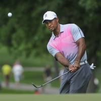 Photo - Tiger Woods watches his chip to the fourth hole, during the first round of the Bridgestone Invitational golf tournament, Thursday, July 31, 2014, in Akron, Ohio. (AP Photo/Phil Long)