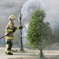 Photo - CHRISTMAS TREE FIRE SAFETY: The unwatered real tree to the left and a regularly watered one are hosed down by Station 4 firefighter Chad Wilds after a demonstration by OKC firefighters on Thursday, Dec. 11, 2008 in OKC. THE OKLAHOMAN ARCHIVES  Jaconna Aguirre - THE OKLAHOMAN