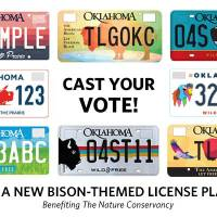 Bison license plates draw praise