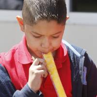 Photo - Third grader Jose Mendiaz eats a popsicle as a reward for studying for state exams at Coolidge Elementary School in Oklahoma City, OK, Thursday, April 4, 2013,  By Paul Hellstern, The Oklahoman