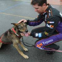 Photo -   Denny Hamlin pets a sled dog named D2 from Iditarod and Yukon Quest champion Dallas Seavey at the FedEx Express Hub in Anchorage, Alaska, Monday, June 25, 2012. (AP Photo/The Anchorage Daily News, Bill Roth)