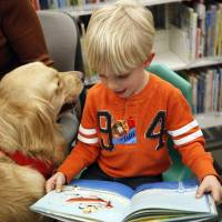 Photo - Reading to dogs is available at the Edmond library and most branches in the Metropolitan Library System. Photo by Sarah Phipps, The Oklahoman Archives