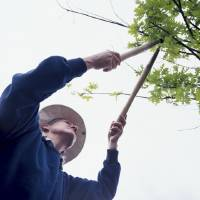 Photo - In Oklahoma, the absolute best time to prune is in the dead of winter, when the plants are fully dormant.  Thinkstock photo.  Hemera Technologies