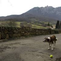 Photo - A dog plays with a tennis ball backdropped by the Pic de Bugarach mountain in the town of Bugarach, France, Thursday, Dec. 20, 2012. The clock is ticking down to Dec. 21, the supposed end of the Mayan calendar, and from China to California to Mexico, thousands are getting ready for what they think is going to be a fateful day. The sleepy town of Bugarach, nestled in the French Pyrenees mountains, is bracing for the arrival of hundreds of New Age enthusiasts and UFO believers that want to witness the end of the Mayan Long Count calendar. (AP Photo/Marko Drobnjakovic)