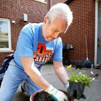Photo - United Way volunteer Bart Byrns, with First American Bank, plants flowers Friday at the Community Services  Building in Norman as part of this year's Day of Caring event.